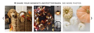 Pottery-Barn-Site